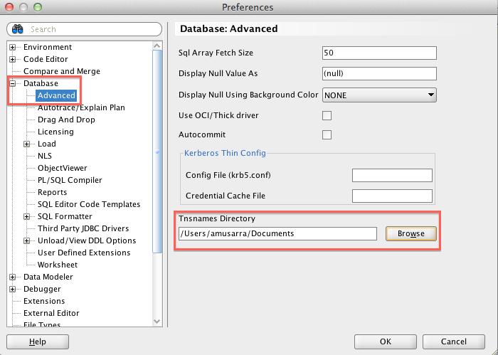Oracle SQL Developer Preferences