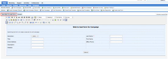 Figura 4. Editor HTML per la personalizzazione della Web to Lead Forms