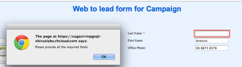 Figura 6. Esempio del Web to Lead Forms generato da SugarCRM